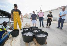 recogida de medusas playa de Gandia